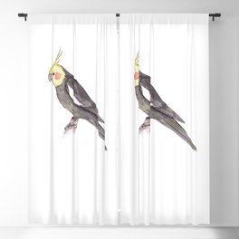 Cockatiel Blackout Curtain