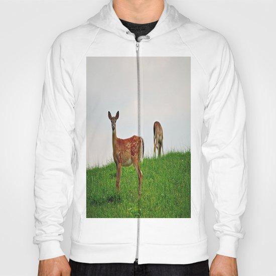 Backyard Deer Hoody