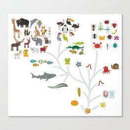 Evolution scale from unicellular organism to mammals. Evolution in biology, scheme evolution of anim Canvas Print
