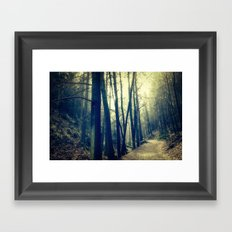 in the forest dark and shaded Framed Art Print