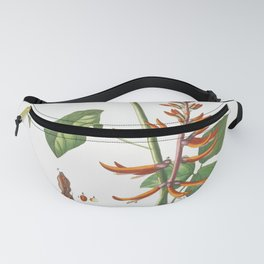 Plantae Selectae No 58-Corallodendron or Coral Tree by Georg Dionysius Ehret Fanny Pack