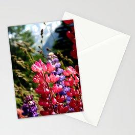 Lupinus, Swiss Alps Stationery Cards