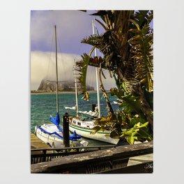Tropical Morro Bay Poster