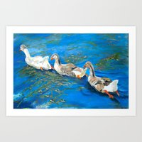 Ducks In A Row Art Print