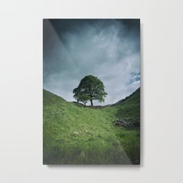 Back to Sycamore Gap Metal Print