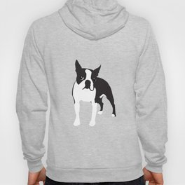 BOSTON TERRIER - Orange Hoody