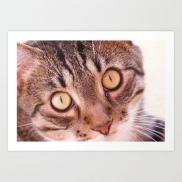Love me Look Art Print