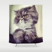persian Shower Curtains featuring Persian Cat by MeggaChurch