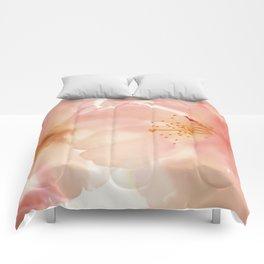 Hopeful Comforters