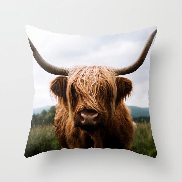 Scottish Highland Cattle in Scotland Portrait II Throw Pillow