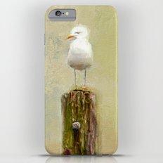 East Coast iPhone 6s Plus Slim Case