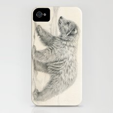 Polar bear's cub iPhone (4, 4s) Slim Case