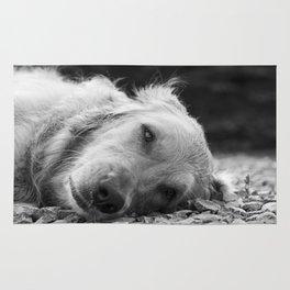 Sleepy Pup Rug