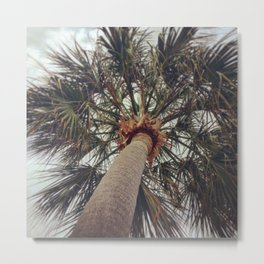Palm Tree Before The Storm Metal Print