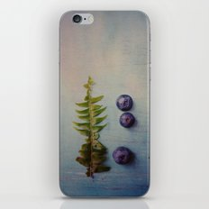 Fern and Blueberries iPhone & iPod Skin