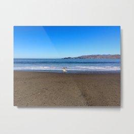 Bird and Beach Metal Print