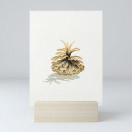 Pine Cone 2  Mini Art Print