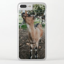 Finnigan Clear iPhone Case