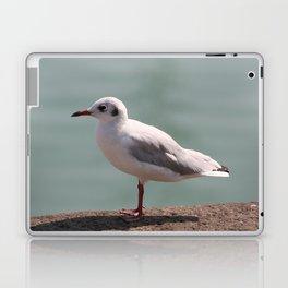 mouette Laptop & iPad Skin