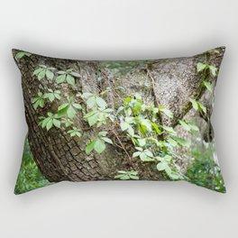 Peaceful place Rectangular Pillow