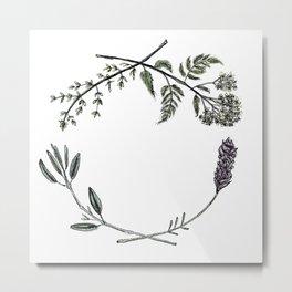 Yarrow, Sage, Lavender, Thyme Metal Print