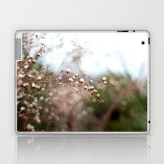 Winter Aster II Laptop & iPad Skin