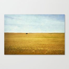 Missing Harvest Canvas Print