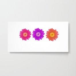 plain daisy Metal Print