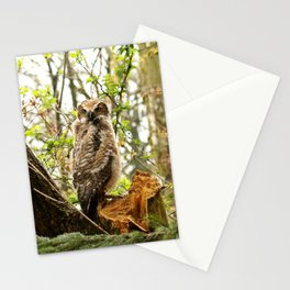 A new friend of the forest Stationery Cards