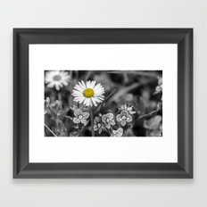 Black and White and Yellow Framed Art Print
