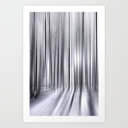 Winter Forest 31 Art Print