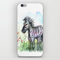 zebra iPhone & iPod Skins featuring Zebra by Olechka