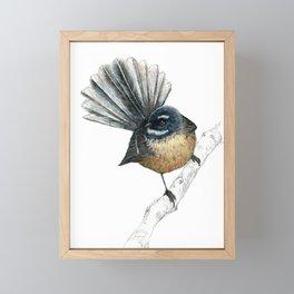 Mr Pīwakawaka, New Zealand native bird fantail Framed Mini Art Print