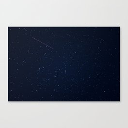 in your multitudes Canvas Print