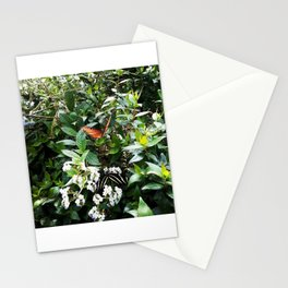 The Zebra & The King Stationery Cards