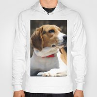 beagle Hoodies featuring Beagle by Artistically Home