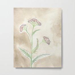 Pink Yarrow Metal Print