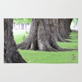 Cambridge tree 2 Rug