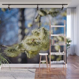 Willow Buds And Early Spring Bee Wall Mural