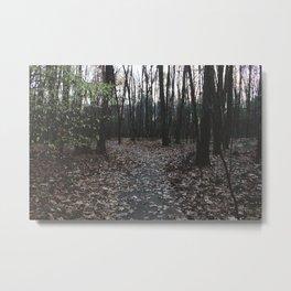 Forest Trail LVII Metal Print