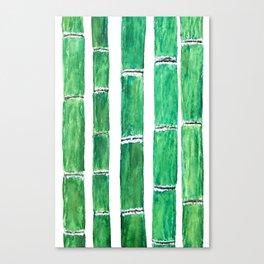 bamboos Canvas Print