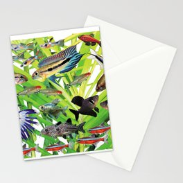 Small Freshwater tropical fish 1 Stationery Cards