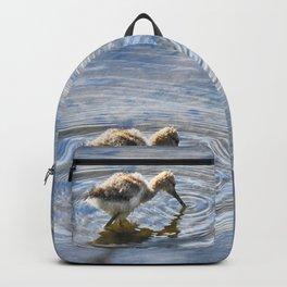 American Avocet Chick Backpack