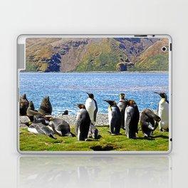 King Penguins and Fur Seals Laptop & iPad Skin