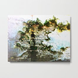 Lafayette Cemetery - Wall of Ferns and Light Metal Print