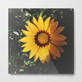 Perfect Mini Sunflower Metal Print