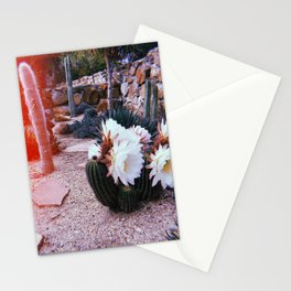 Cacti ll Stationery Cards