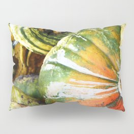 Squashed Together Pillow Sham