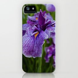 Garden Party (irises) iPhone Case