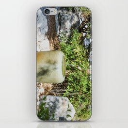 Japanese garden 6 iPhone Skin